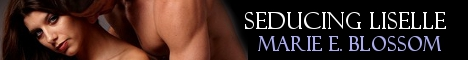 seducing-liselle-banner.jpg